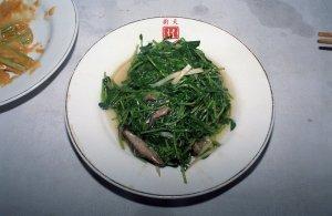 豆苗(モヤシタイプのもの)