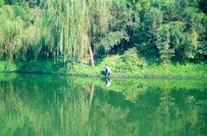 釣り人@揚州痩西湖公園