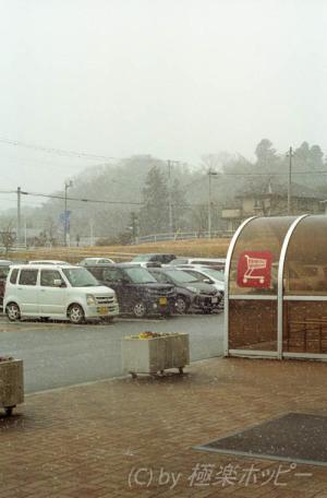 トプコンスーパーD+RE Auto Topcor 58mmF1.4@Kodak ProImage 100