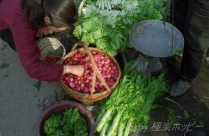 筍など@揚州自由市場