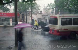 外は雨でした@揚州福運門酒楼