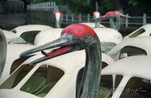 鶴のボート@揚州ぶらぶら