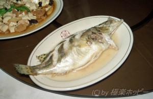 清蒸桂魚@三福源酒楼