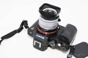 Leica Summicron 50mmF2.0+α7@L(M)-NEXアダプター