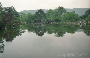 花港観魚@西湖十景