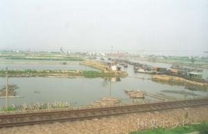 上海郊外@上海から南京へ