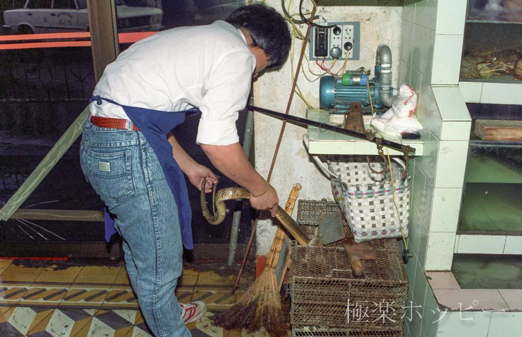 蛇@江濱酒家